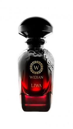 Aj Arabia Widian Liwa