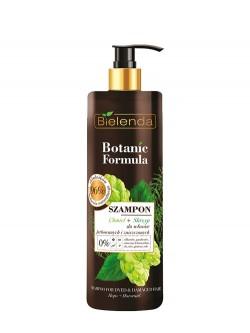 Шампунь для окрашенных волос Bielenda Botanic Formula Полевой хвощ и хмель
