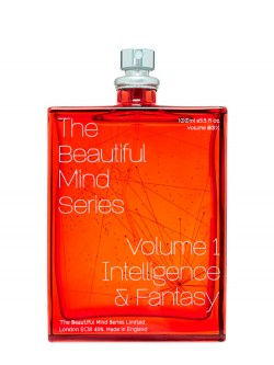 The Beautiful Mind Vol-1 Intelligence & Fantasy